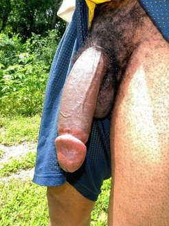 Hairy and shaved dicks